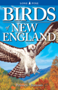 Birds of New England