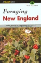 Foraging New England