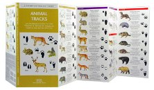 Pocket Naturalist: Animal Tracks