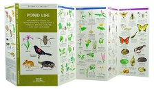 Pocket Naturalist: Pond Life